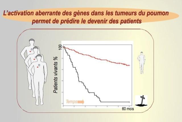 Dans le cas de cellules cancéreuses à bon pronostic, soit quand aucun des 26 gènes n'est activé, 80 % des patients sont en vie après 3 ans (courbe rouge). Si ces gènes se réveillent, rendant les cellules agressives, le taux de survie tombe à zéro (courbe noire)