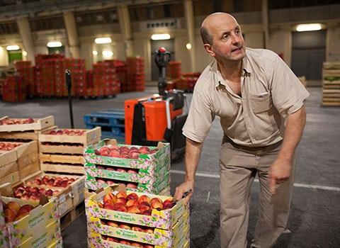 Travailleurs de nuit : grossiste en fruits et légumes au marché d'intérêt national (MIN) de la ville de Grenoble