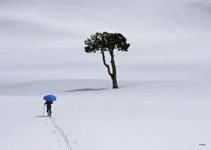 """""""Le parapluie de la Queyrie"""", est l'un des clichés emblématique est la couverture du livre Grenoblicimes et l'un des clichés emblématiques de l'exposition."""