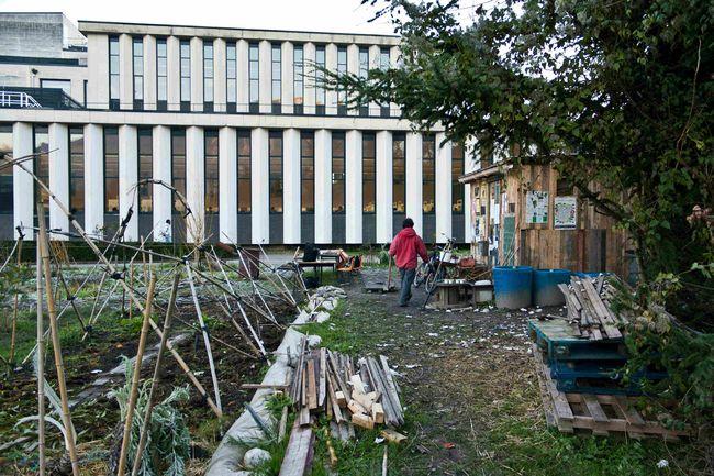 Jardins d'utopie sur le campus de Saint-Martin-d'Hères où des étudiants cultivent leur légume en autogestion contre la direction de la fac et la police juste devant la bibliothèque universitaire Droit-Lettres