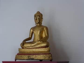 Siddhârta immobile à l'ashram des Amis de Hauteville - yoga en prison André Weill