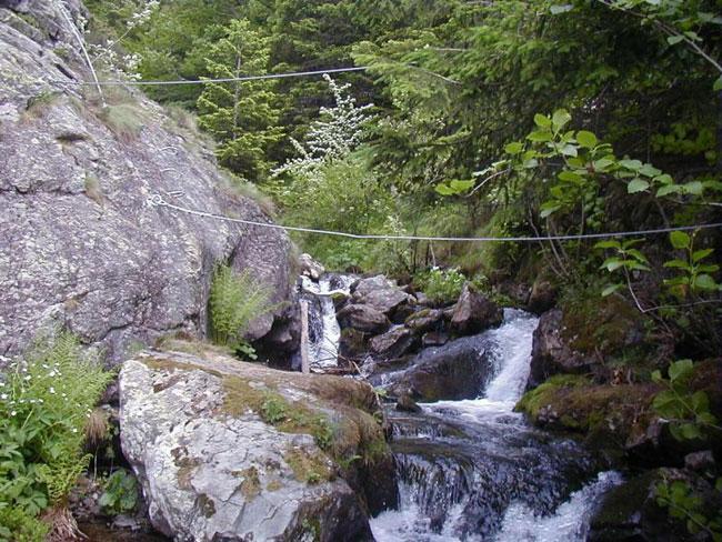 cours d'eau rochers corde barreaux rochers via ferrata arbres forêt