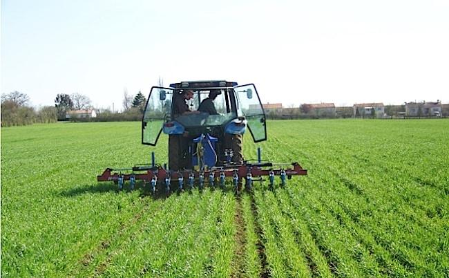 Pesticides dans l'agriculture DR