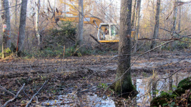 Défrichage sur le chantier du Center Parcs de Roybon dans la forêt des Avenières en Chambaran compensation zones humides © Zad Roybon