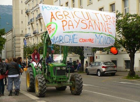 Marche contre Monsanto à Grenoble le 24 mai 2015. © Delphine Chappaz - placegrenet.fr