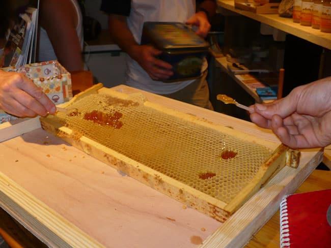 dégustation de miel directement dans les alvéoles de cire - Delphine Chappaz