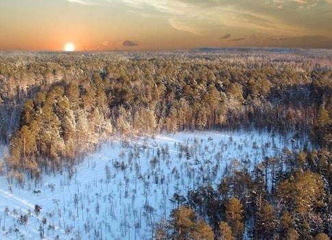 C'est dans le sous-sol de Sibérie que les chercheurs ont mis à jour des virus géants vieux de plusieurs milliers d'années. DR