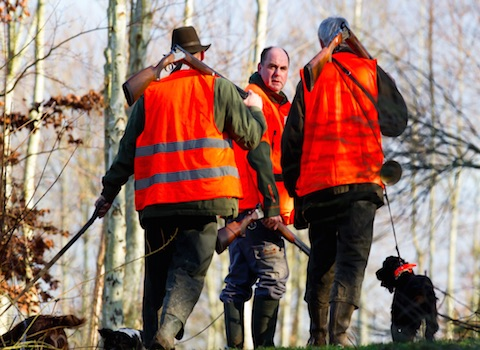 La Frapna et la LPO Isère réagissent après l'accident de chasse du 10 octobre. © Chasseur de France