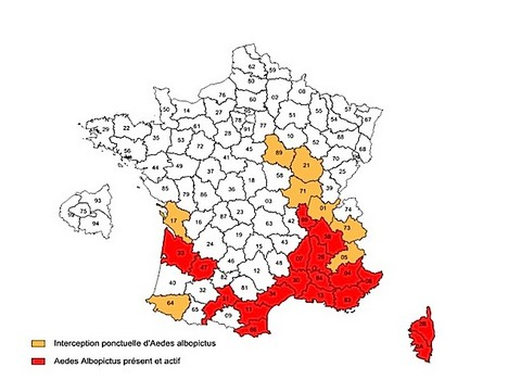 Dix-huit départements sont en alerte rouge en France. La surveillance entomologiste y a été renforcée. © ARS Février 2014