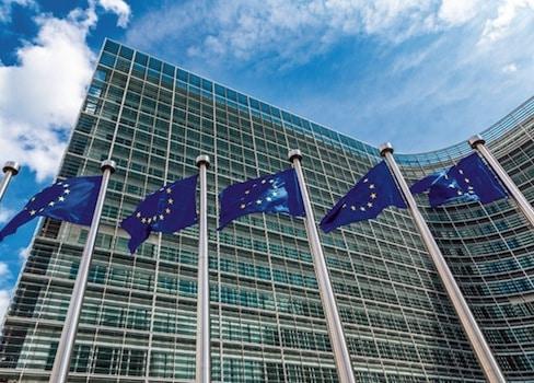 La commission européenne traine des pieds pour définir et, derrière, réglementer les perturbateurs endocriniens. DRSlama, Bruxelles, parabènes, phtalates, bisphénol, pesticides, biocides