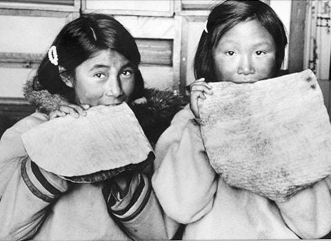 Fillettes mâchant la peau de phoque pour l'assouplir, photographie de R.P. André Chauvel, 1960 Coll. Instut culturel Avataq