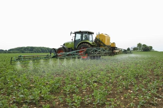 De nombreux pesticides ont des effets de perturbateurs endocriniens. Crédit Fotolia