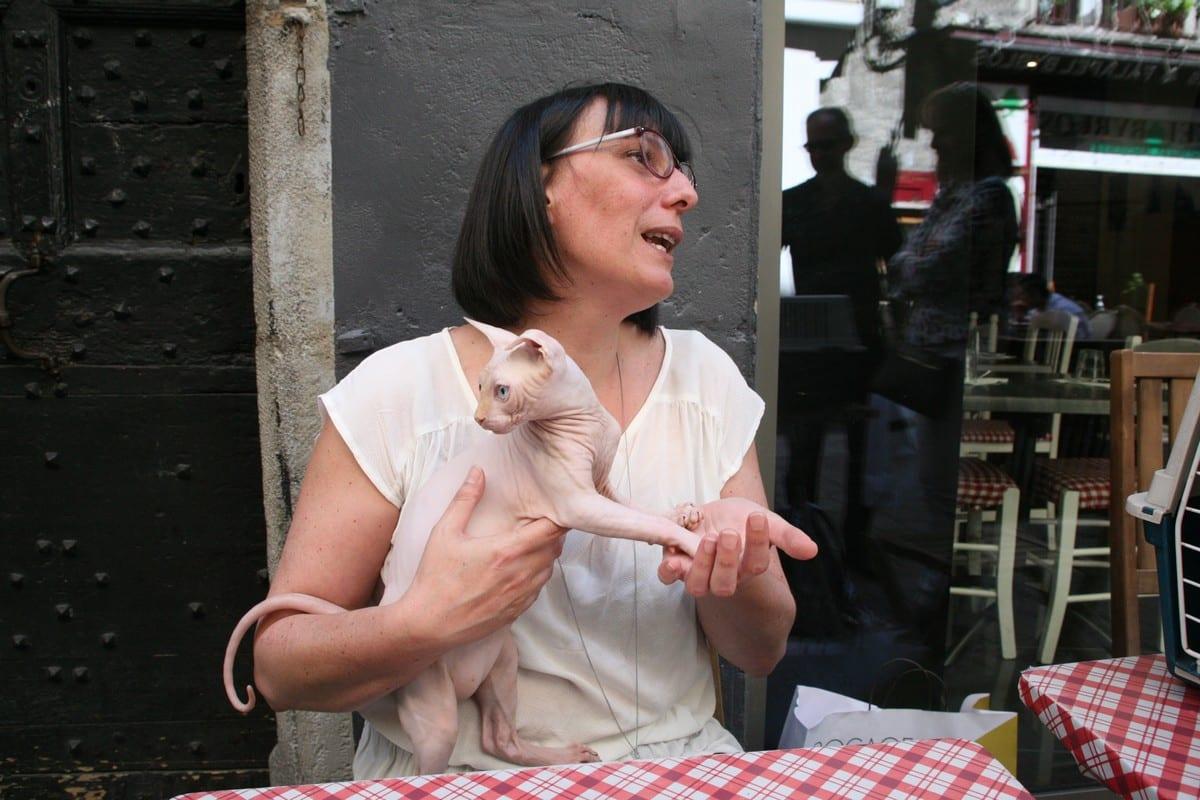 Bar à chats 4