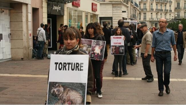 Manifestation contre l'exploitation animale à Grenoble en 2016 © Joël Kermabon - Place Gre'net