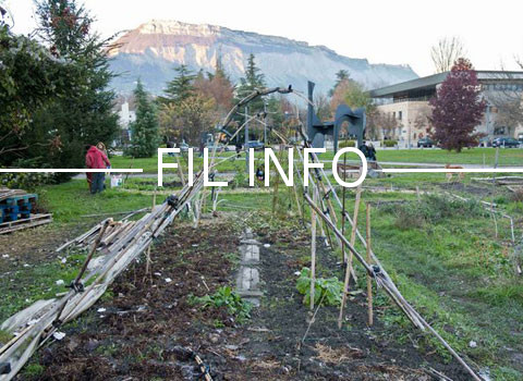 La pétition demandant la mise à disposition d'espaces pour cultiver des fruits et légumes en ville touche à sa fin. Manquent encore plus de 1500 signatures…