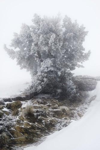 Oisans, février 2015 © Éric Bourret