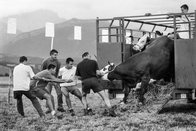 Comice agricole à Prébois, août 2003 © Emmanuel Breteau