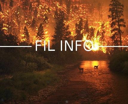 L'association de protection de la nature Le Pic Vert réclame une suspension de toutes les opérations de brûlage de végétation en Isère.