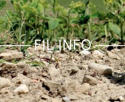Le département de l'Isère a été placé en vigilance sécheresse. Un hiver sec et un printemps doux n'ont pas permis aux nappes de se recharger suffisamment.