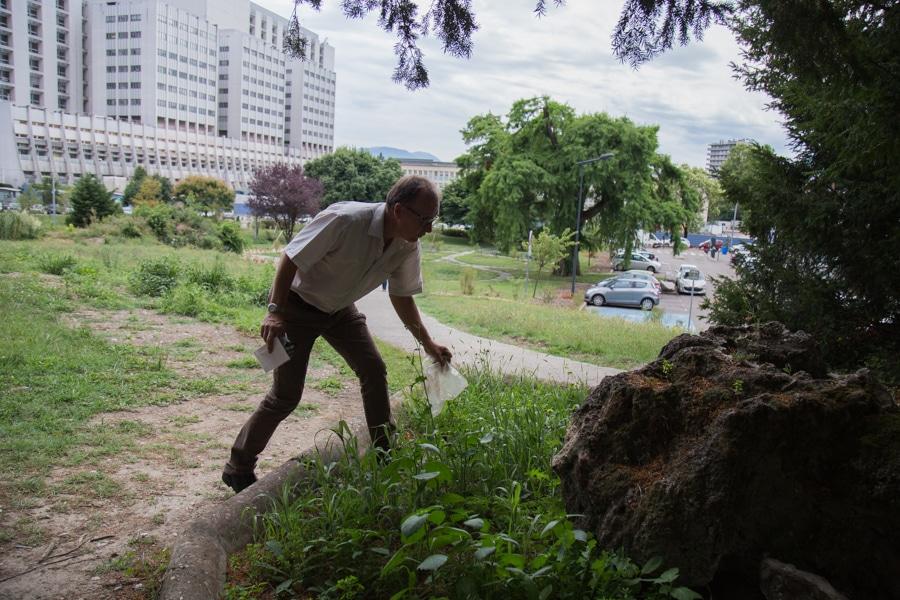 Le jardin des plantes médicinales (le jardin Dominique Villars) initié par docteur Serge Krivobok se situe dans le parc des Facultés de Médecine et Pharmacie de l'Université Grenoble-Alpes à la Tronche. © Yuliya Ruzhechka - Place Gre'net