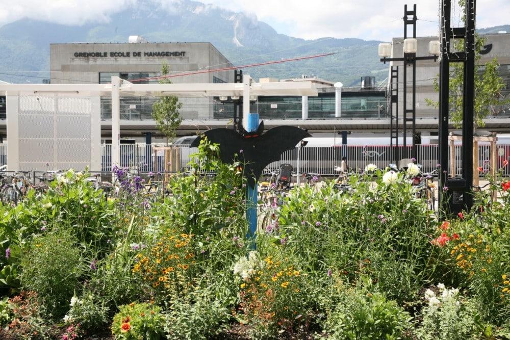 Une chauve-souris veille d'ores et déjà aperçue devant la gare de Grenoble © Florent Mathieu - Place Gre'net