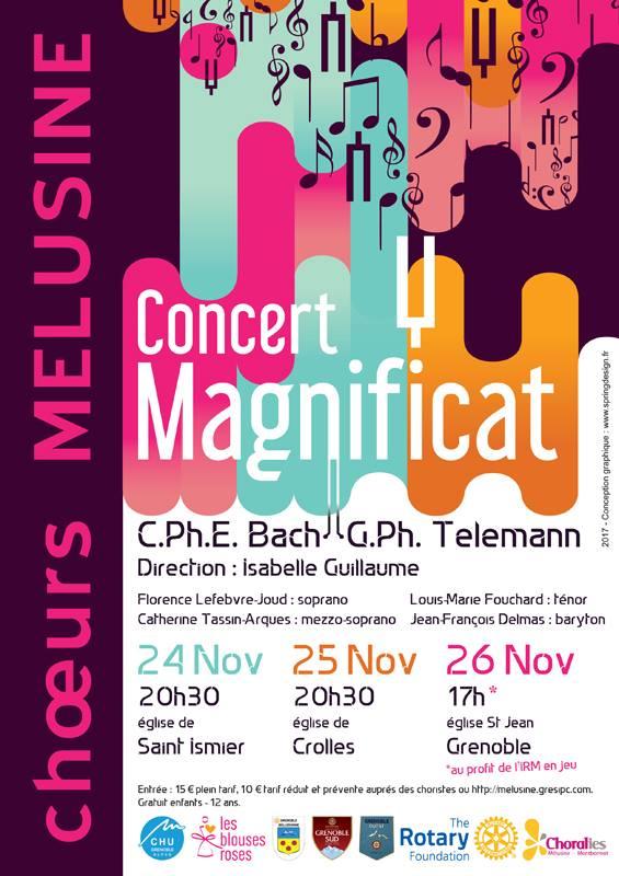 Le concert du dimanche 26 novembre de la Chorale Mélusine se fait au profit de l'opération. DR