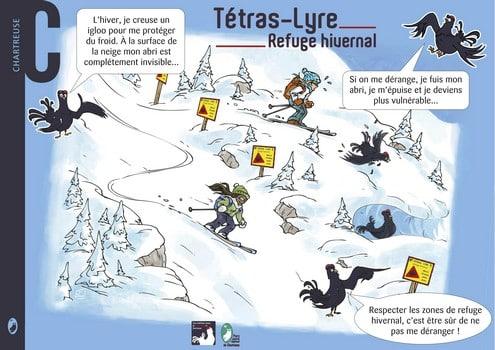 Les membres du Club Alpin Français de Grenoble Oisans et les agents du parcs ont conjointement balisé les zones de refuges hivernales pour prévenir les randonneurs. © Parc Naturel Régional de Chartreuse Face au déclin des Tétras lyre, emblème des massifs alpins, le Parc de Chartreuse et les acteurs locaux ont mis en place des zones de quiétudes.