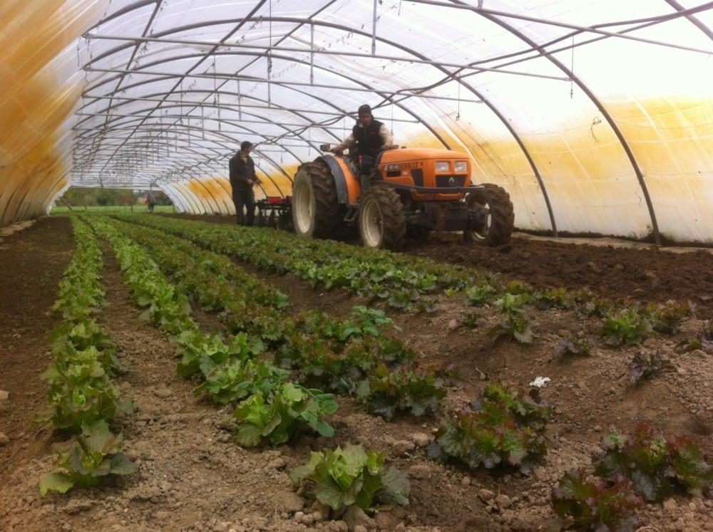 Le chantier d'insertion des Nouveaux jardins de la solidarité (Moirans) © Nouveaux jardins de la solidarité