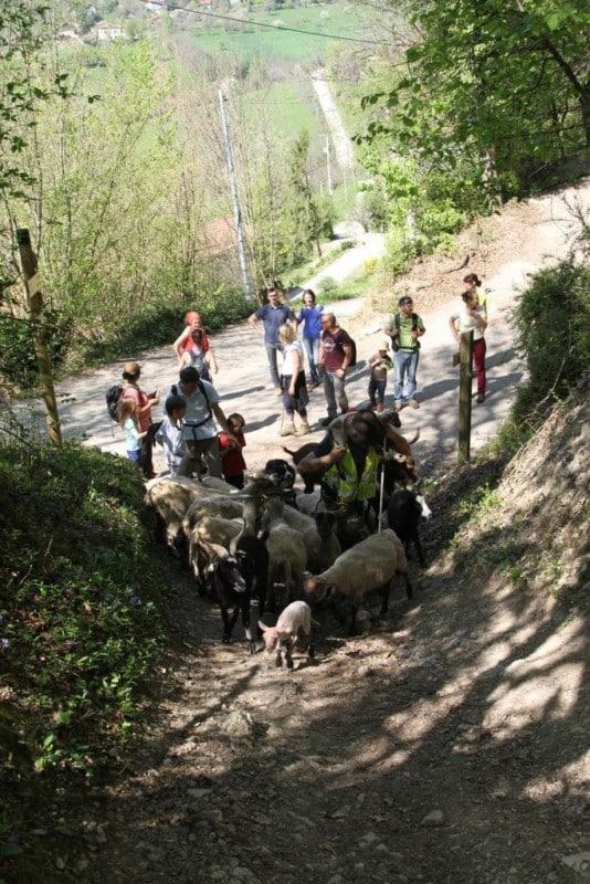 randonnée pédagogique © Grenoble-Bastille