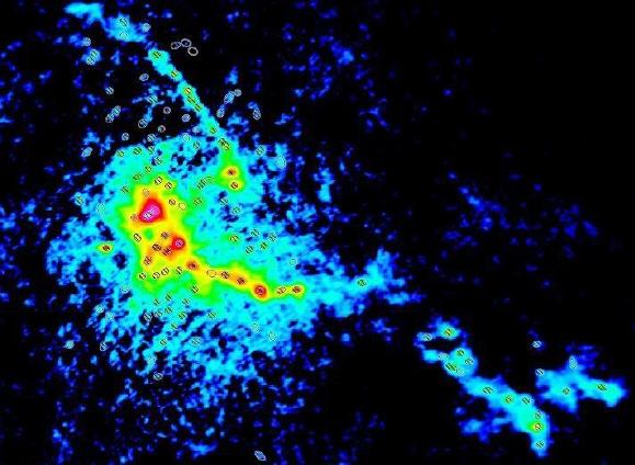 L'amas d'étoiles en formation W43-MM1, tel qu'observé avec l'interféromètre millimétrique ALMA. Les très nombreux sites de formation d'étoiles, appelés coeurs et identifiés ici par des ellipses, témoignent de la forte activité de formation d'étoiles de cette région. © ESO/ALMA/F. Motte/T. Nony/F. Louvet/Nature Astronomy