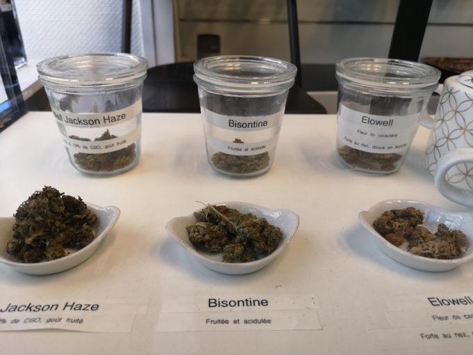 Différentes variétés de cannabis sont proposées. © Joël Kermabon - Place Gre'net