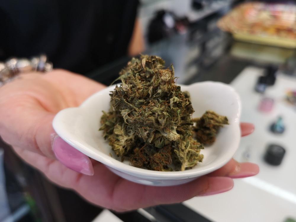 """Le CBD, un """"cannabis"""" sans effet psychotrope autorisé et produit dans plusieurs pays européens © Joël Kermabon - Place Gre'net"""