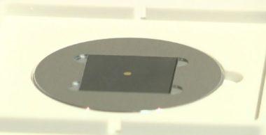 La sculpture exposée est invisible à l'œil nu et nécessite un microscope pour être vue