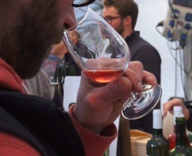 Le Club œnologie de Sciences Po Grenoble organise un festival du vin. Trois jours de conférences et dégustations.
