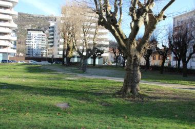 Les habitants du quartier craignent que le parc Tarze disparaisse au profit d'un projet immobilier. DR
