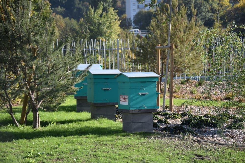 Le Crédit agricole Sud Rhône Alpes a inauguré son nouveau siège au cœur du quartier de la Presqu'île, et vante les atouts environnementaux du site.Les ruches de plus en plus à la mode dans les entreprises © Isabelle Doucet