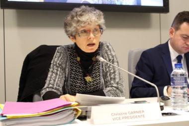 L'intervention de Christine Garnier n'a pas convaincu le Front contre les expulsions. © Jules Peyron - placegrenet.fr