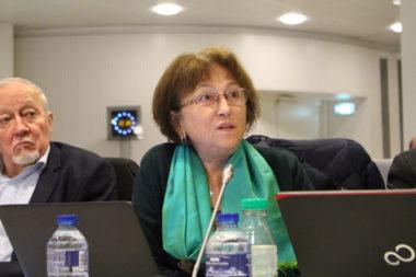 """Françoise Cloteau s'est dite """"favorable à l'arrêté anti-expulsion"""" proposé par le Front contre les expulsions. © Jules Peyron - placegrenet.fr"""