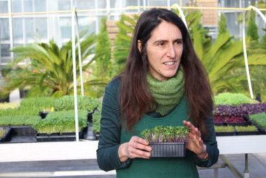 Isabelle Robles, présidente de l'association 1000 pouces et initiatrice du projet d'espace micro-pousses. © Jules Peyron - placegrenet.fr