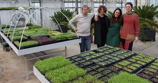 Isabelle, Agathe, Olivier et Juliette, les quatre administrateurs de l'association 1000 pousses. Ils gèrent le projet d'espace micro-pousses. © Jules Peyron - placegrenet.fr