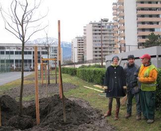 """Lancement du défi """"3,2,1 Plantez ! """" avec Lucille Lheureux, adjointe à la Nature en ville de Grenoble, vendredi 21 décembre 2018 © Séverine Cattiaux - Place Gre'net"""