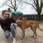 Les animaux du refuge du Versoud vont bénéficier de nouveaux boxes en 2019©Grenoble-Alpes Métropole-Lucas Frangella