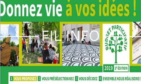 FIL INFO Budget participatif 2019 de la Ville de Grenoble, recueil des idées DR