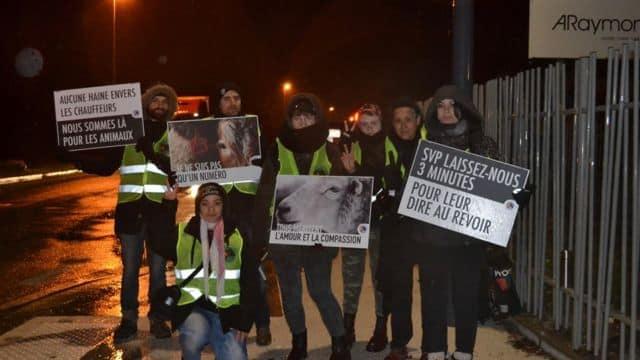 Le groupe Grenoble Animal Save le 11 février devant l'abattoir de Grenoble © Grenoble Animal Save Facebook