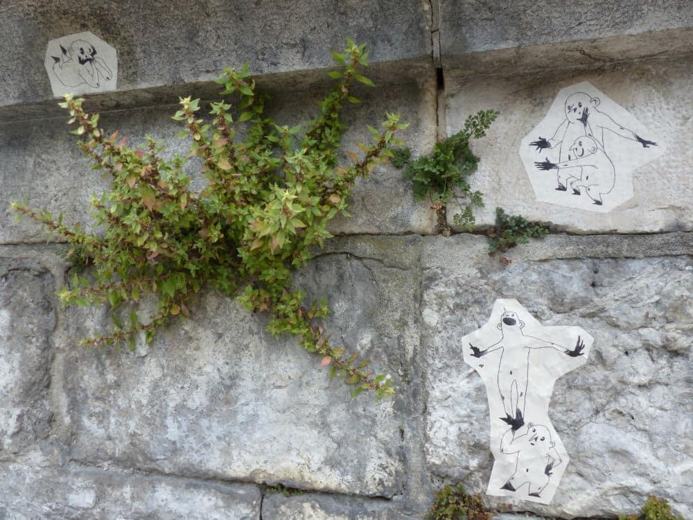 Plantes Sauvages Rue Grenoble Credit Photo Nina Soudre 0