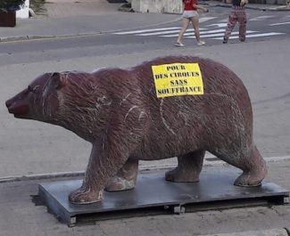 Appel au boycott des cirques avec animaux dans les rues de Villard-de-Lans (Isère). Alors que la prise de conscience grandit, les maires restent démunis.