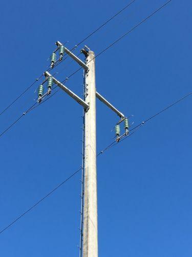 La LPO appelle RTE-EDF à agir au plus vite alors que quatre cigognes sont mortes électrocutées en deux nuit sur une ligne à haute-tension du Nord-Isère.Les lignes à haute tension représentent un danger pour les oiseaux migrateurs. © LPO Isère