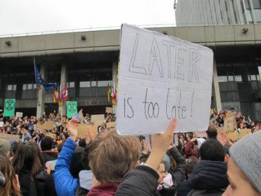 Marche du mouvement international Youth For Climate, devant la mairie de Grenoble, vendredi 15 mars 2019. © Séverine Cattiaux - Place Gre'net