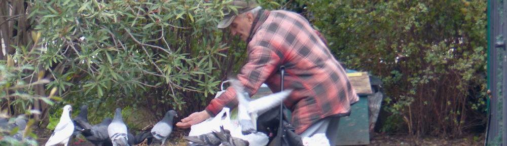 Homme qui donne à manger aux pigeons. ©Manon Heckmann - Placegrenet.fr