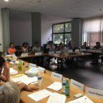 Conseil municipal 2019 Eybens DR